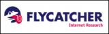 Flycatcher Internet Research B.V.
